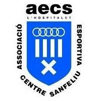 logo aecs
